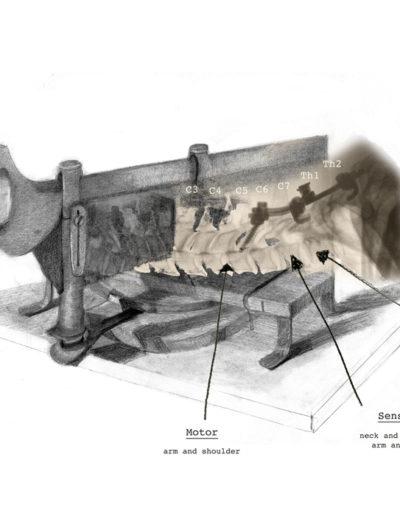 "Sensory Scale, 2012 | 12""x16"", Archival Pigment Print"